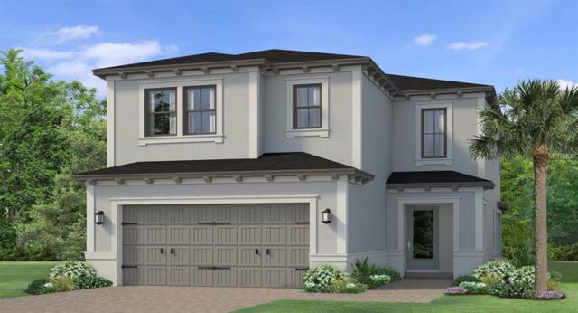 4722 Tramanto Lane, Wesley Chapel, FL 33543 (MLS #T3164558) :: Team Bohannon Keller Williams, Tampa Properties