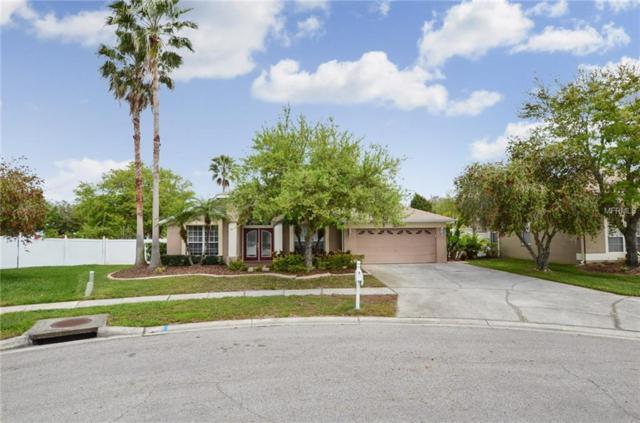 27027 Hollybrook Trail, Wesley Chapel, FL 33544 (MLS #T3164611) :: Griffin Group