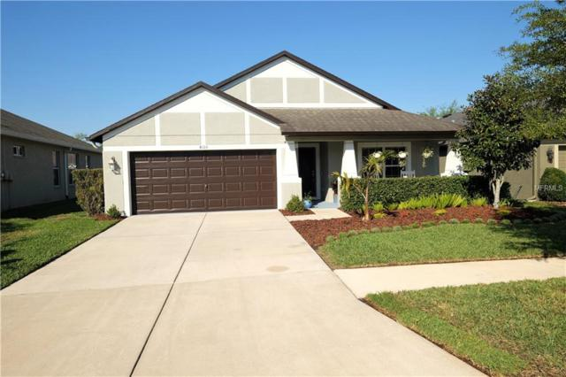 Address Not Published, Wesley Chapel, FL 33543 (MLS #T3164637) :: Griffin Group