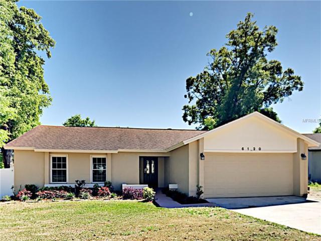 6120 Sparling Hills Circle, Orlando, FL 32808 (MLS #T3164638) :: Dalton Wade Real Estate Group