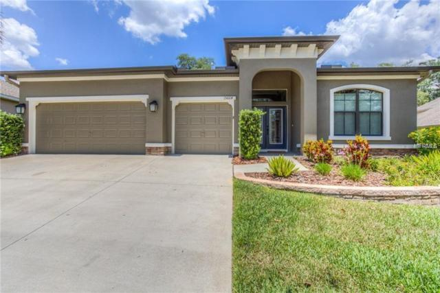 15664 Starling Water Drive, Lithia, FL 33547 (MLS #T3164673) :: Medway Realty
