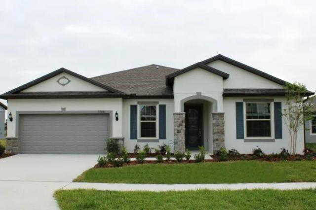 7788 Yale Harbor Drive, Wesley Chapel, FL 33545 (MLS #T3164722) :: The Duncan Duo Team
