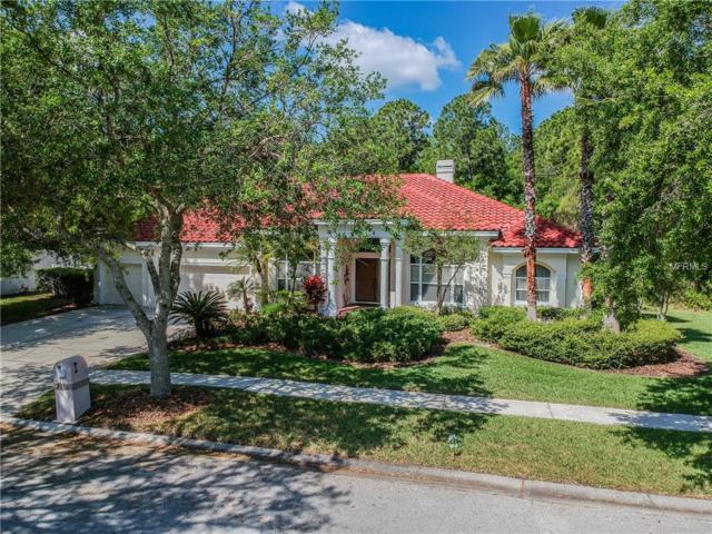 9210 Pine Island Court, Tampa, FL 33647 (MLS #T3164963) :: Andrew Cherry & Company