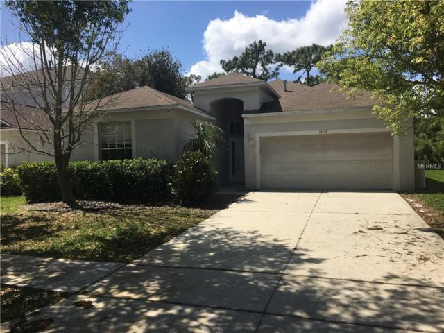 19112 Wood Sage Drive, Tampa, FL 33647 (MLS #T3164987) :: The Duncan Duo Team