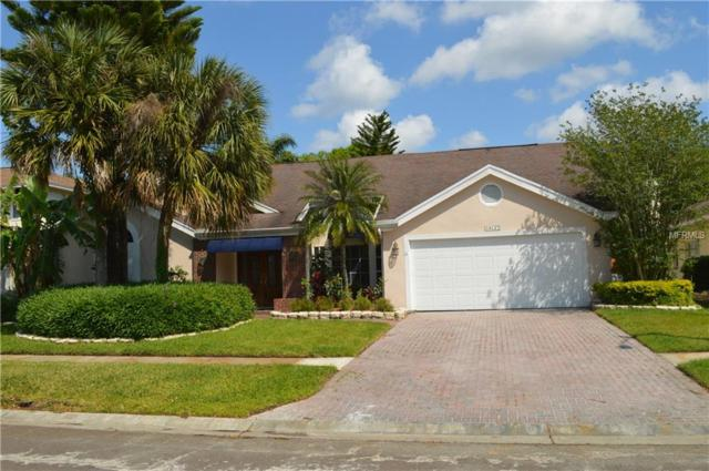 14127 Stonegate Drive, Tampa, FL 33624 (MLS #T3164989) :: The Duncan Duo Team