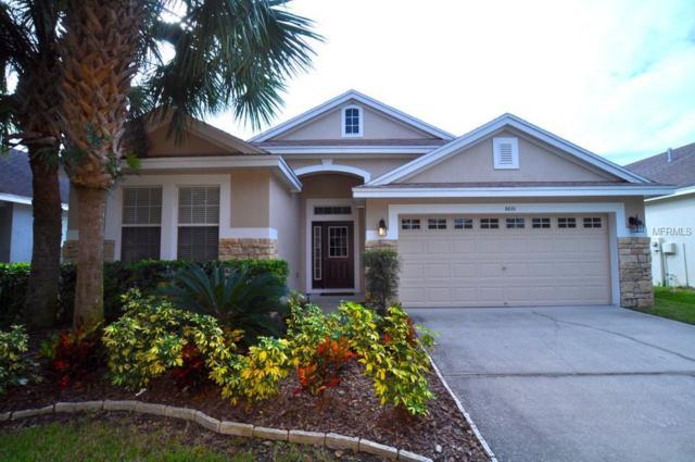6021 Gannetdale Drive, Lithia, FL 33547 (MLS #T3165002) :: Medway Realty
