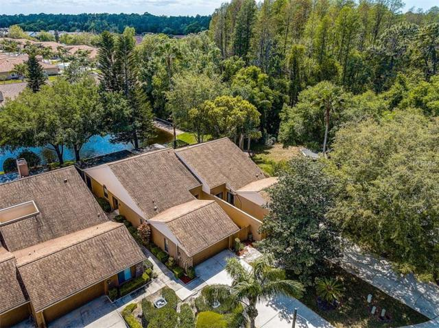 5466 Salem Square Drive S, Palm Harbor, FL 34685 (MLS #T3165023) :: Baird Realty Group
