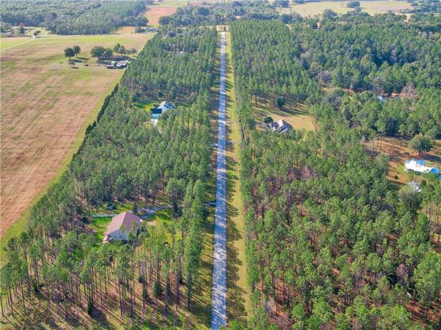 Pony Pond Road, Dade City, FL 33523 (MLS #T3165132) :: Team 54