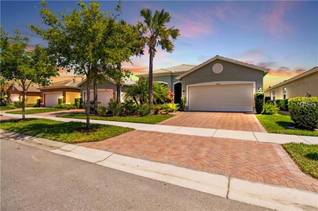 15726 Aurora Lake Circle, Wimauma, FL 33598 (MLS #T3165163) :: Cartwright Realty