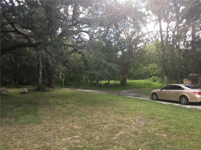 10370 W Yulee Drive, Homosassa, FL 34448 (MLS #T3165208) :: The Duncan Duo Team