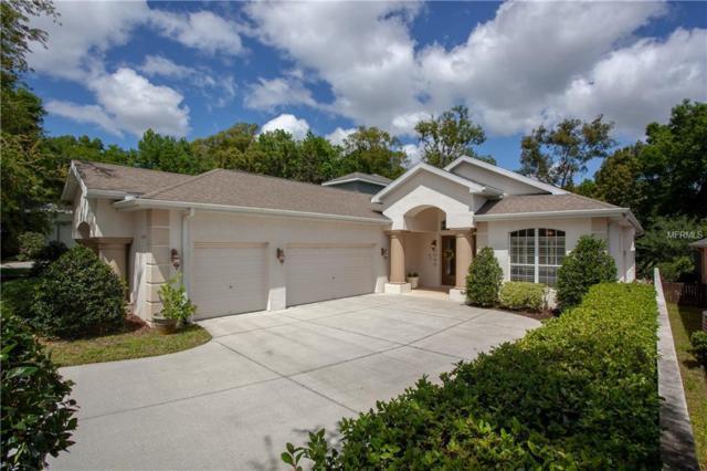 12303 Forest Highlands Drive, Dade City, FL 33525 (MLS #T3165215) :: Team Bohannon Keller Williams, Tampa Properties