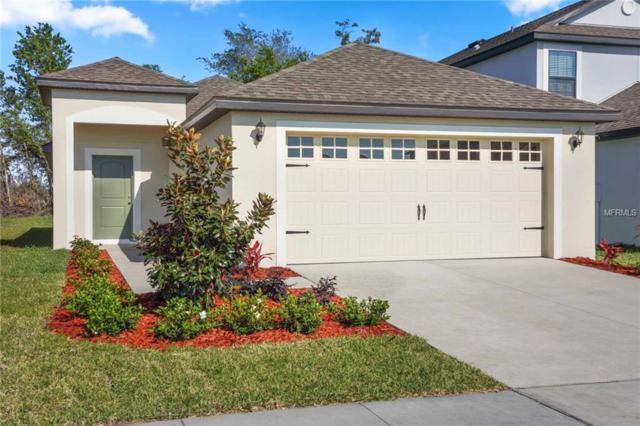 2238 Capian Drive, Lakeland, FL 33805 (MLS #T3165311) :: The Duncan Duo Team