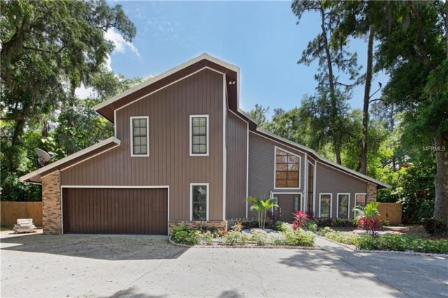 1511 Holleman Drive, Valrico, FL 33596 (MLS #T3165373) :: The Duncan Duo Team