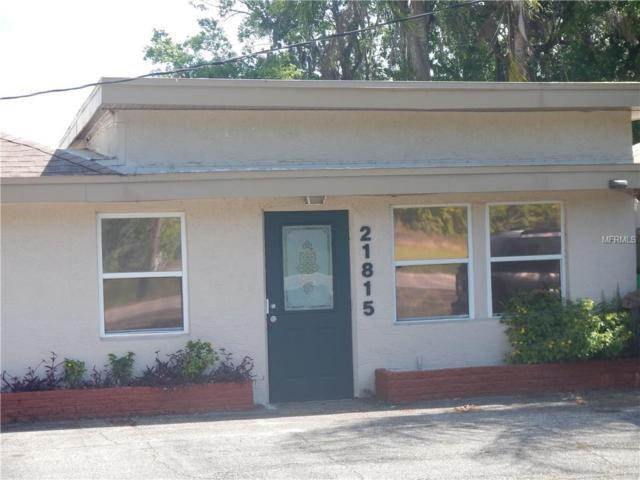 Address Not Published, Land O Lakes, FL 34639 (MLS #T3165402) :: Burwell Real Estate