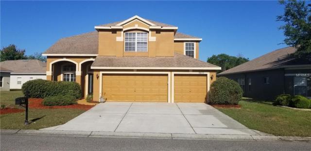 9233 Edistro Place, New Port Richey, FL 34654 (MLS #T3165480) :: The Duncan Duo Team