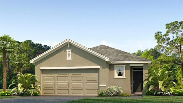 16252 Silent Sands Lane, Odessa, FL 33556 (MLS #T3165536) :: Cartwright Realty