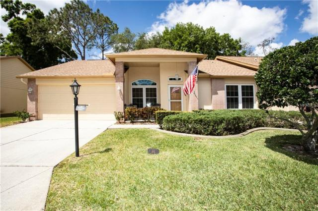 6525 Pine Walk Drive, New Port Richey, FL 34655 (MLS #T3165554) :: Griffin Group