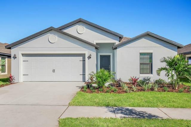 1006 Wynnmere Walk Avenue, Ruskin, FL 33570 (MLS #T3165588) :: Team Bohannon Keller Williams, Tampa Properties