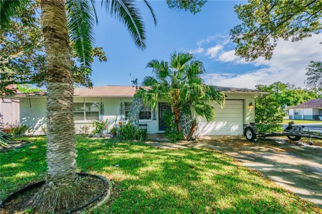 6527 Meadowbrook Lane, New Port Richey, FL 34653 (MLS #T3165626) :: RE/MAX Realtec Group