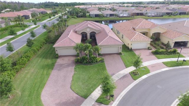 4822 Marble Springs Circle, Wimauma, FL 33598 (MLS #T3165652) :: Sarasota Gulf Coast Realtors