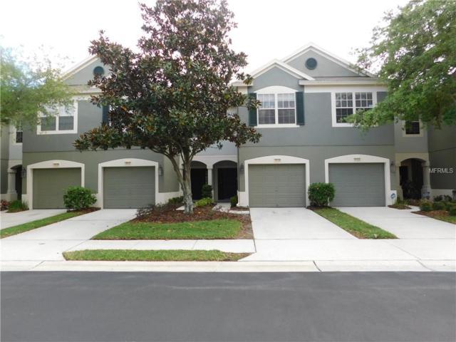 10125 Haverhill Ridge Drive, Riverview, FL 33578 (MLS #T3165699) :: Cartwright Realty