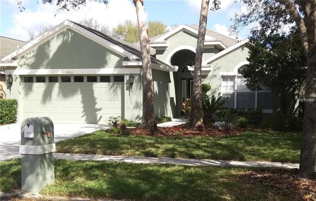 18836 Maisons Drive, Lutz, FL 33558 (MLS #T3165776) :: Andrew Cherry & Company