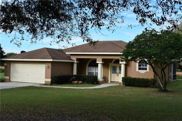 15127 Old Johnston Road, Dade City, FL 33523 (MLS #T3165783) :: Cartwright Realty