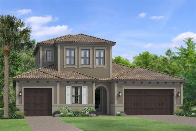 28578 Marsciano Lane, Wesley Chapel, FL 33543 (MLS #T3165923) :: Team Bohannon Keller Williams, Tampa Properties