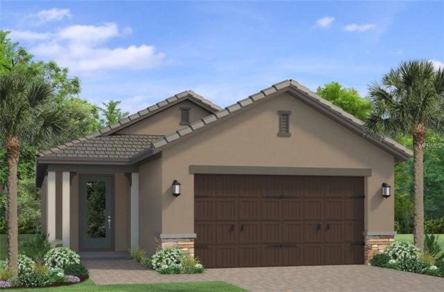 4738 Tramanto Lane, Wesley Chapel, FL 33543 (MLS #T3165940) :: Team Bohannon Keller Williams, Tampa Properties