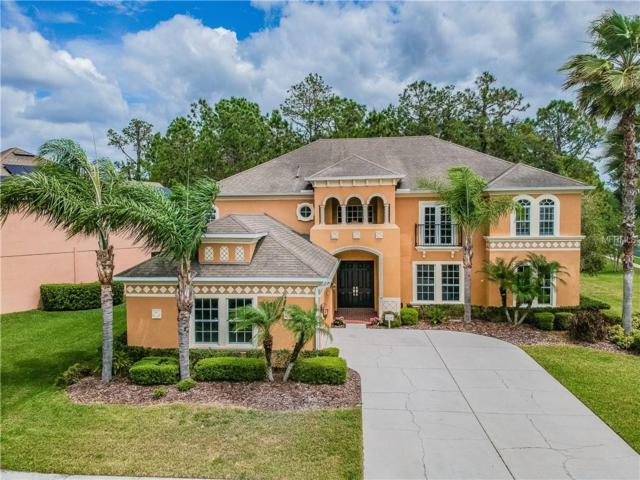 3404 Loggerhead Way, Wesley Chapel, FL 33544 (MLS #T3165975) :: Team Bohannon Keller Williams, Tampa Properties