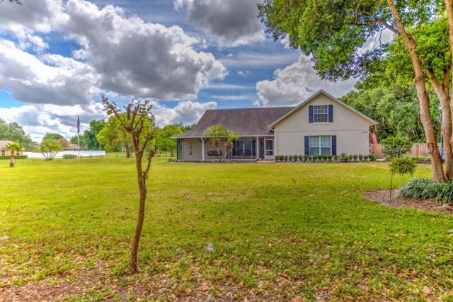 3109 E Williams Road, Plant City, FL 33565 (MLS #T3166116) :: Mark and Joni Coulter   Better Homes and Gardens