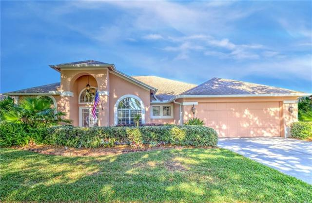 3523 Shadowood Drive, Valrico, FL 33596 (MLS #T3166134) :: The Duncan Duo Team