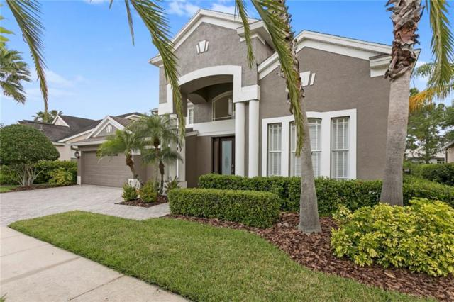 10418 Canary Isle Drive, Tampa, FL 33647 (MLS #T3166145) :: Team Bohannon Keller Williams, Tampa Properties
