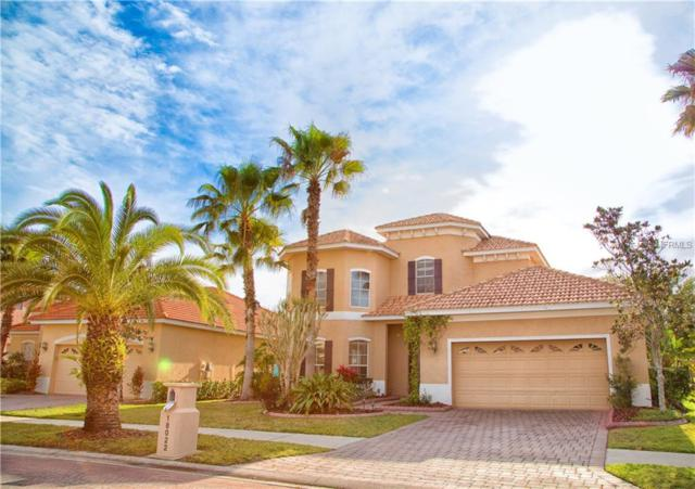 18022 Cozumel Isle Drive, Tampa, FL 33647 (MLS #T3166364) :: Team Bohannon Keller Williams, Tampa Properties