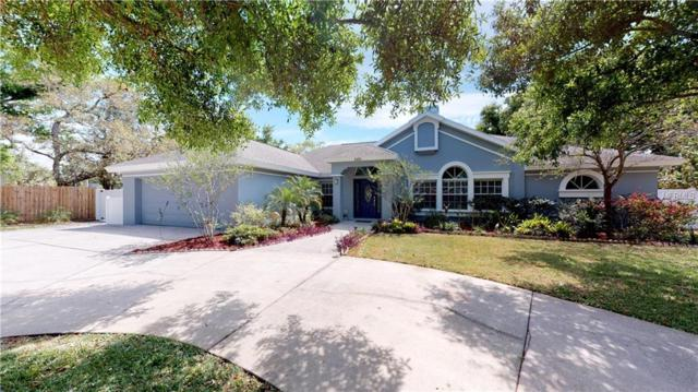 4402 W Lawn Avenue, Tampa, FL 33611 (MLS #T3166434) :: Baird Realty Group