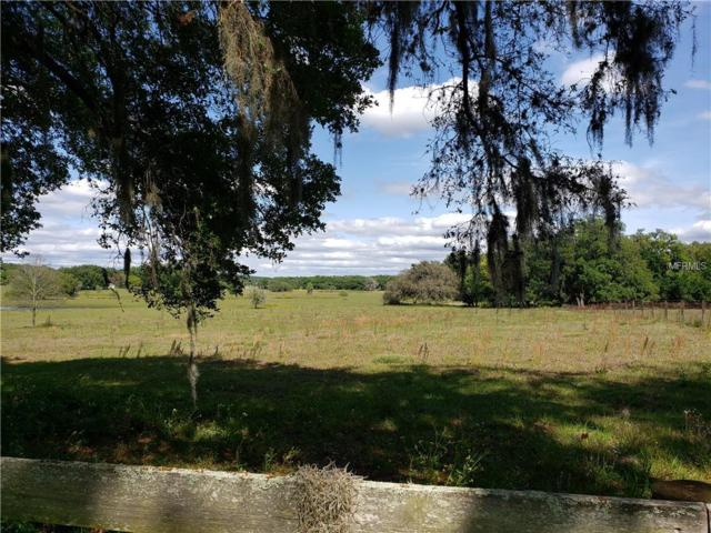 10306 Curley Road, Dade City, FL 33525 (MLS #T3166474) :: The Duncan Duo Team