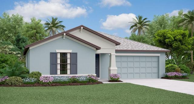 10005 Caraway Spice Avenue, Riverview, FL 33578 (MLS #T3166502) :: The Duncan Duo Team