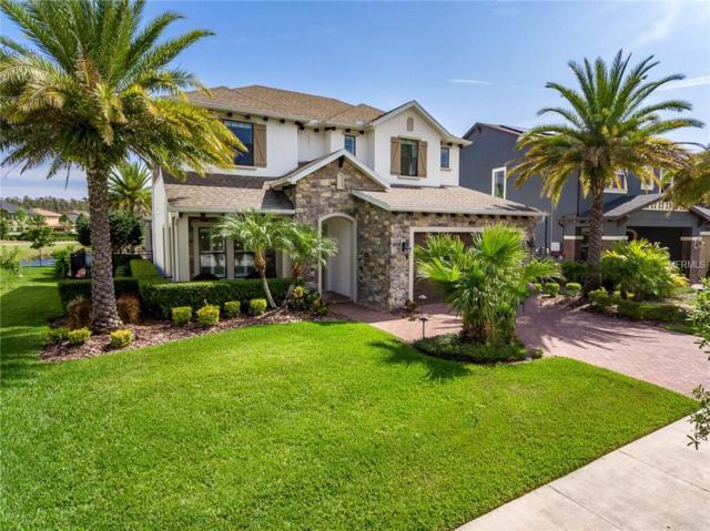 3998 Aldea Way, Wesley Chapel, FL 33543 (MLS #T3166638) :: Team Bohannon Keller Williams, Tampa Properties
