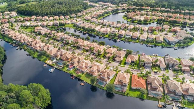 18026 Cozumel Isle Drive, Tampa, FL 33647 (MLS #T3166740) :: Team Bohannon Keller Williams, Tampa Properties