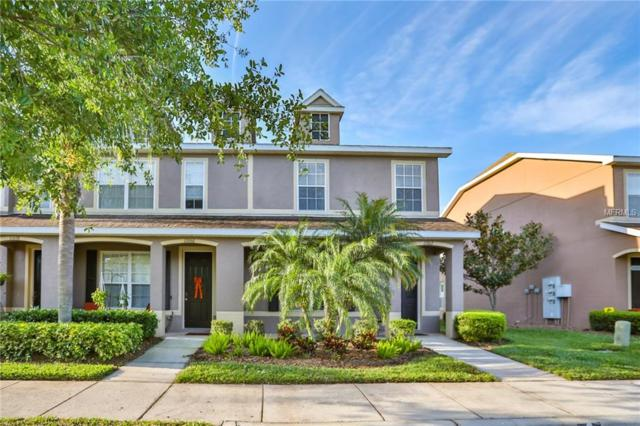 11662 Declaration Drive, Tampa, FL 33635 (MLS #T3166783) :: Griffin Group