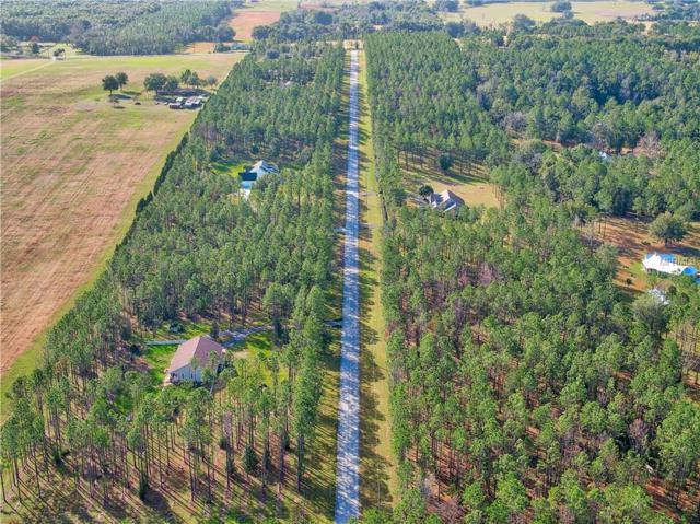 Pony Pond Road, Dade City, FL 33525 (MLS #T3166840) :: Dalton Wade Real Estate Group