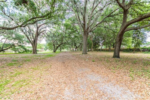 7029 Krycul Avenue, Riverview, FL 33578 (MLS #T3166872) :: Team Pepka