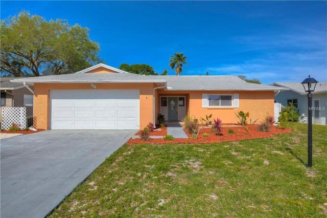 2563 Bramblewood Drive W, Clearwater, FL 33763 (MLS #T3166895) :: Team Bohannon Keller Williams, Tampa Properties