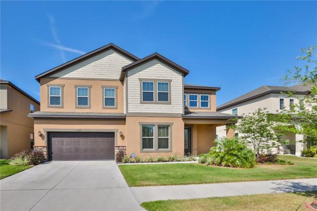 13107 Bee Blossom Place, Riverview, FL 33579 (MLS #T3167072) :: The Brenda Wade Team
