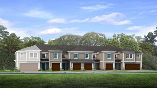 6830 Citrus Creek Lane, Tampa, FL 33625 (MLS #T3167134) :: NewHomePrograms.com LLC