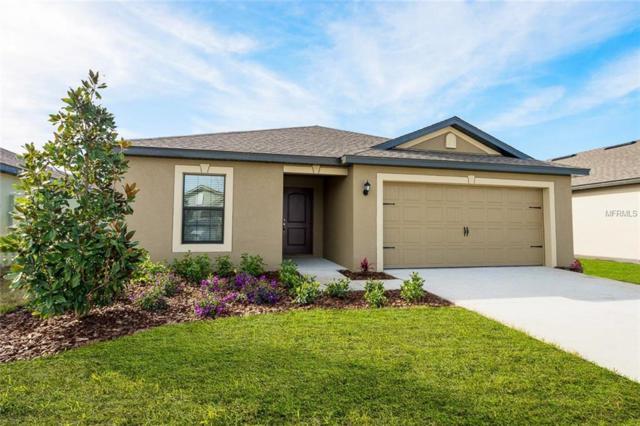 1005 Wynnmere Walk Avenue, Ruskin, FL 33570 (MLS #T3167154) :: Team Bohannon Keller Williams, Tampa Properties