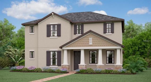 4806 Bexley Village Drive, Land O Lakes, FL 34638 (MLS #T3167176) :: NewHomePrograms.com LLC