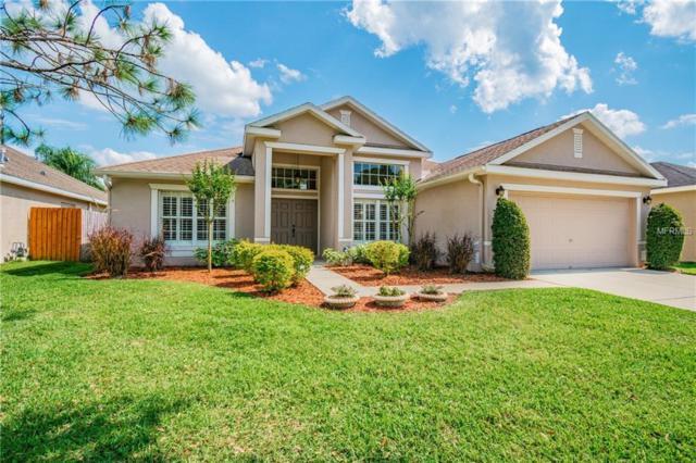 8215 Canyon Creek Way, Tampa, FL 33647 (MLS #T3167180) :: Team Bohannon Keller Williams, Tampa Properties