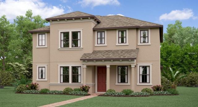4830 Bexley Village Drive, Land O Lakes, FL 34638 (MLS #T3167182) :: NewHomePrograms.com LLC