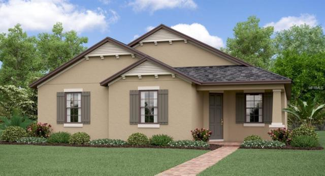 4794 Bexley Village Drive, Land O Lakes, FL 34638 (MLS #T3167209) :: NewHomePrograms.com LLC